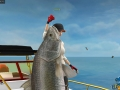 World Of Fishing_0018
