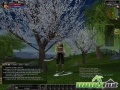 thumbs silkroad online cherry blossoms