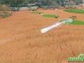 Winning Putt Preview Screenshot 06 Gameplay Ball Flying