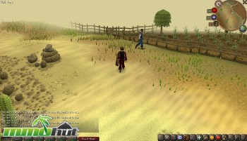 RuneScape Desert Screenshot