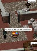 Salem Online 2015 Review