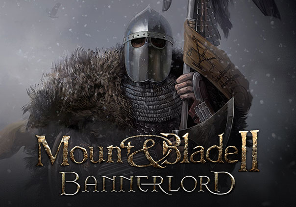 Mount and Blade II Bannerlords Game Profile Banner