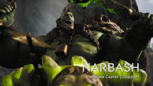 Paragon Narbash Overview