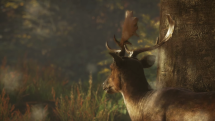theHunter: Call of the Wild Gameplay Trailer