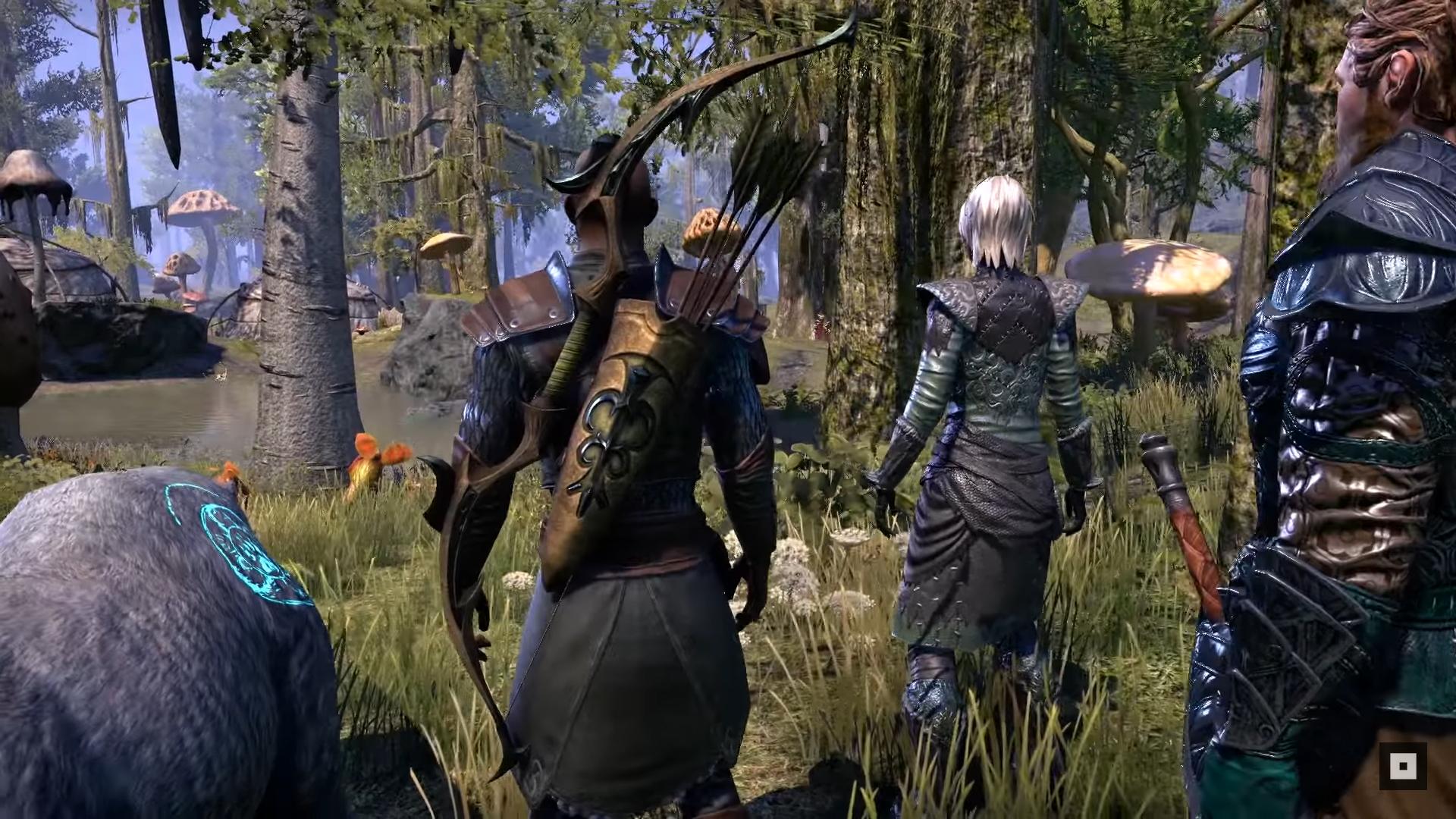 ESO-Warden-Gameplay