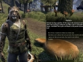 ESO-Morrowind-LaunchDay-04