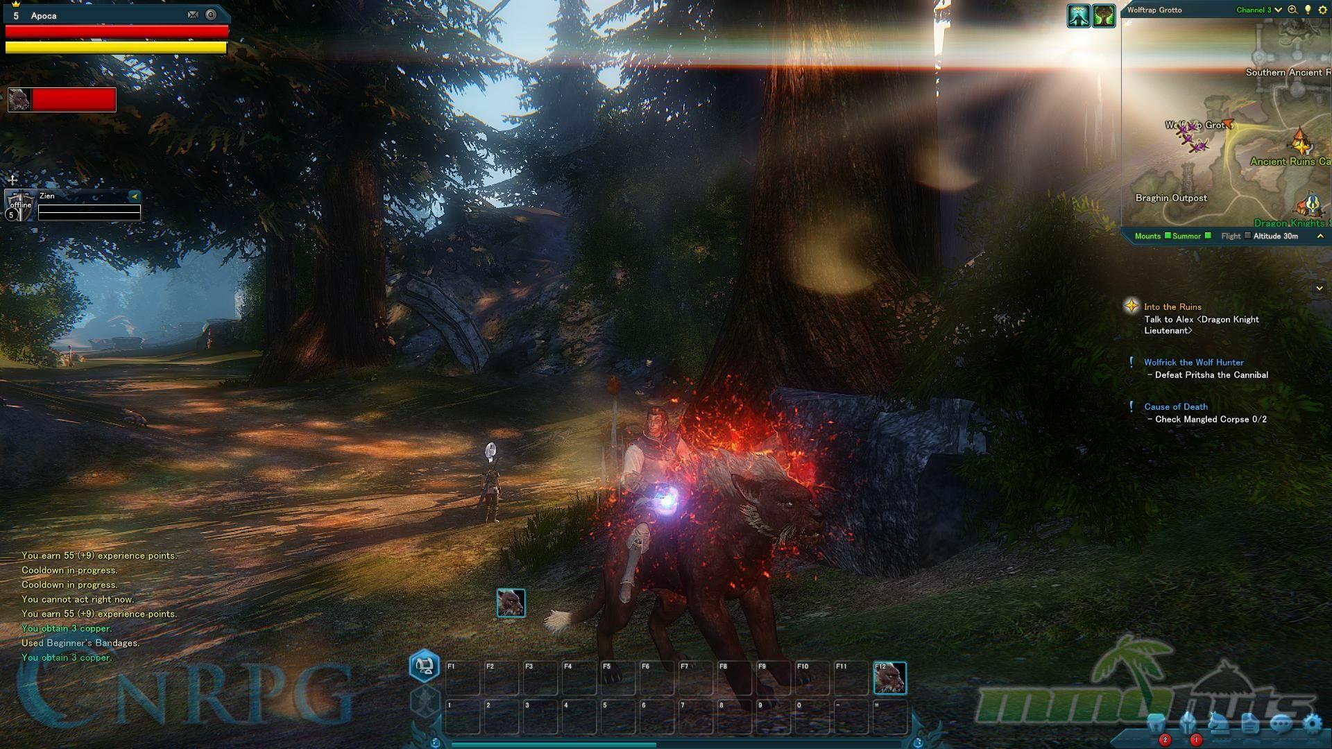 RidersOfIcarus-Review32