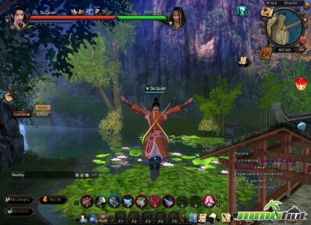 Age of Wushu Review