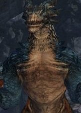 Dragon's Prophet Beta Review thumbnail