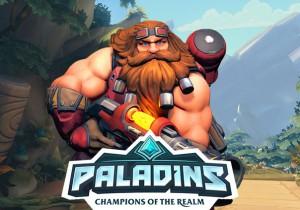 Paladins Game Banner