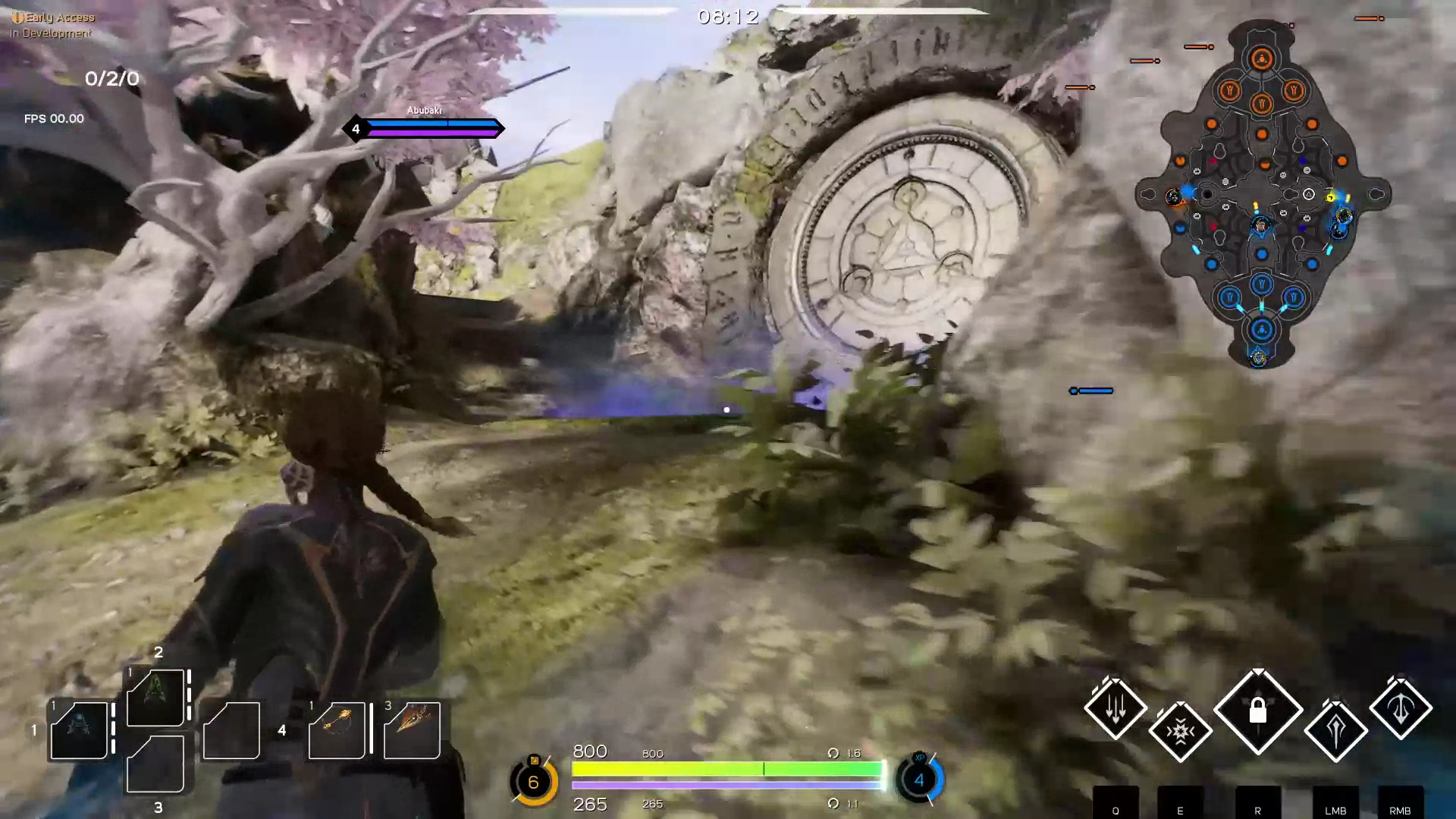 Paragon Early Access Feature