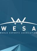 World Esports Association (WESA) Founded