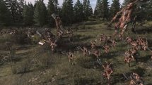 Total War: WARHAMMER Battlefield Briefing - Stir River