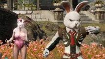 Bless Online Costume Showcase