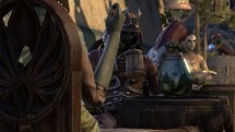 The Elder Scrolls Online: Morrowind – Naryu's Guide to Vivec City