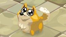 WAKFU Dauge Pet Trailer
