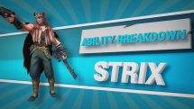 Paladins Strix Ability Breakdown Video Thumbnail