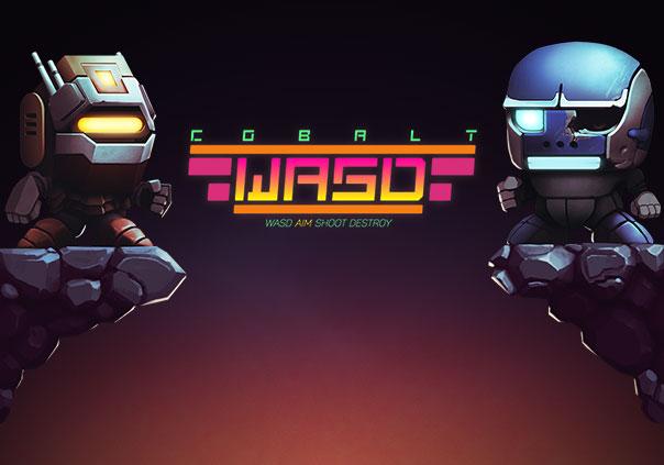 Cobalt WASD Game Profile Banner
