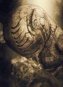 Entropia Universe - Arkadia Moon News - Thumbnail