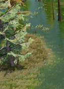 Legends of Aria Swamp Thumbnail