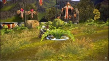 TERA_ Rootstock & Pond Faire Festivals - thumbnail