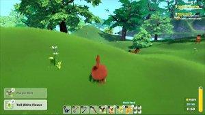 Garden Paws Video Thumbnail