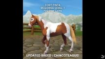 Star Stable - Chincoteague Pony
