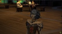 FInal Fantasy XIV - New Gridania New Character Experience -