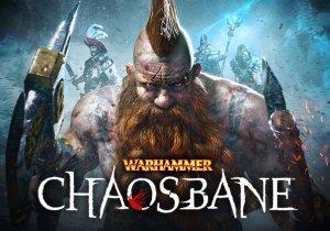 Warhammer Chaosbane Profile Banner