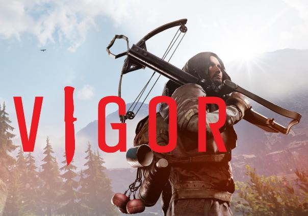 Vigor Game Banner