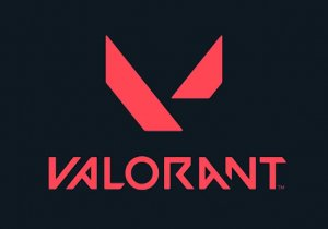 Valorant Game Profile Image