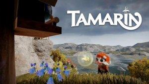 Tamarin Launch Trailer