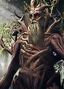 LOTRO Treebeard